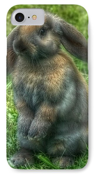 Curious Bunny IPhone Case by Tyra  OBryant