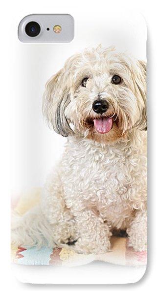 Cute Dog Portrait IPhone Case by Elena Elisseeva