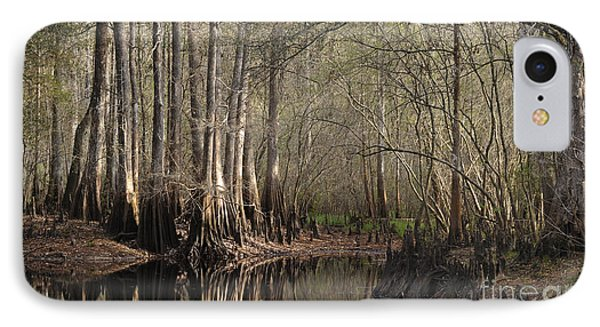 Cypress And Water IPhone Case