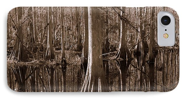 Cypress Swamp Reflection In Sepia Phone Case by Carol Groenen
