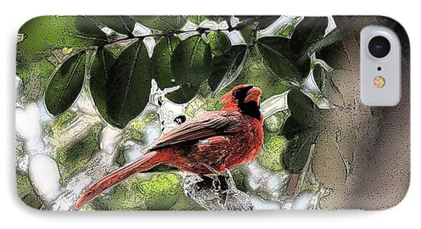 IPhone Case featuring the photograph Daddy Cardinal by Donna G Smith