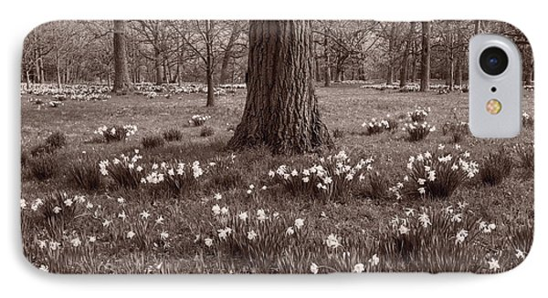 Daffodil Glade Number 2 Bw IPhone Case
