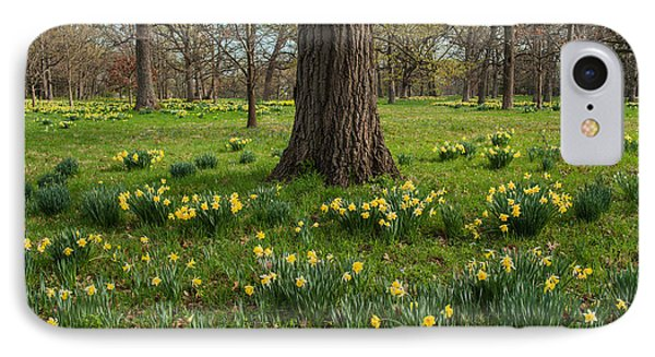 Daffodil Glade Number 2 Phone Case by Steve Gadomski
