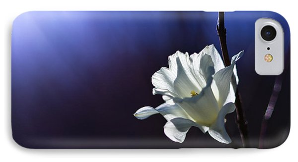 Daffodil Light IPhone Case by Lori Coleman