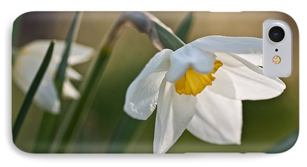 Daffodil Phone Case by Ron Smith