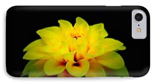 IPhone Case featuring the photograph Dahlia Delight by Jeanette C Landstrom