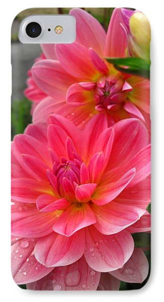 IPhone Case featuring the photograph Dahlia Dew by Cheryl Perin
