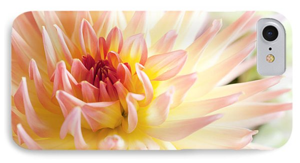 Dahlia Flower 01 IPhone Case by Nailia Schwarz