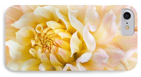 Dahlia Flower 08 IPhone Case by Nailia Schwarz