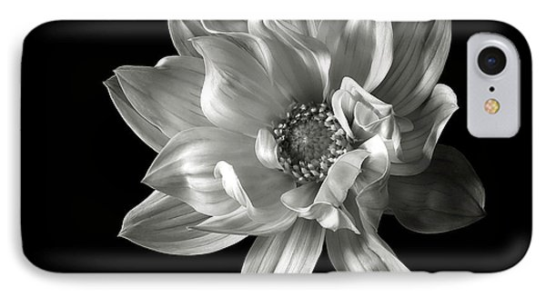 Dahlia In Black And White IPhone Case by Endre Balogh