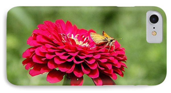IPhone Case featuring the photograph Dahlia's Moth by Elizabeth Winter