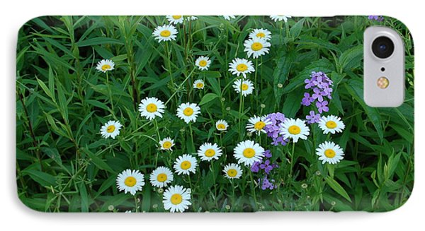Daisies Phone Case by Aimee L Maher Photography and Art Visit ALMGallerydotcom