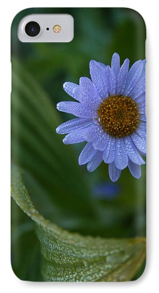 IPhone Case featuring the photograph Daisy Dew by Cheryl Perin