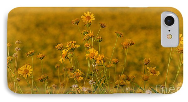 Daisy's IPhone Case by Donna Greene