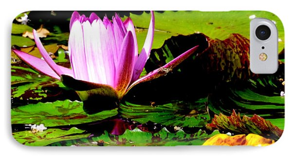 IPhone Case featuring the photograph Dancing Pink Water Lilly by Jodi Terracina