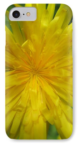 IPhone Case featuring the photograph Dandelion Close Up by Kym Backland