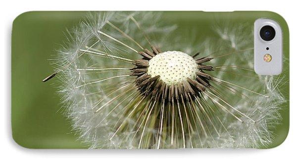 Dandelion Half Gone IPhone Case by Teresa Zieba