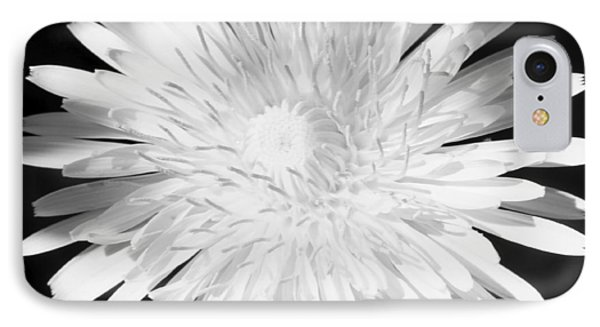 Dandelion In Black And White IPhone Case by Mark J Seefeldt