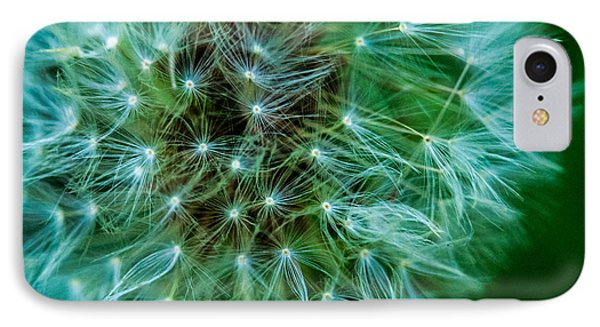 Dandelion Puff-green IPhone Case by Toma Caul