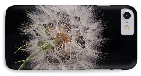 Dandelion Silhouette Phone Case by Ivelina G