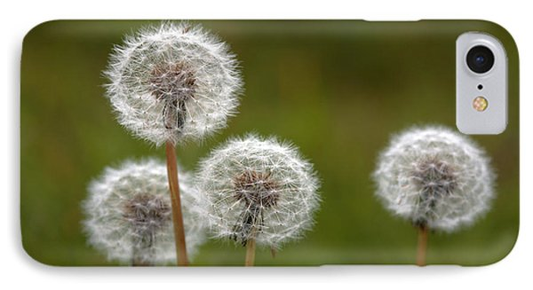 Dandelions (taraxacum Officinale) IPhone Case by Dr Keith Wheeler