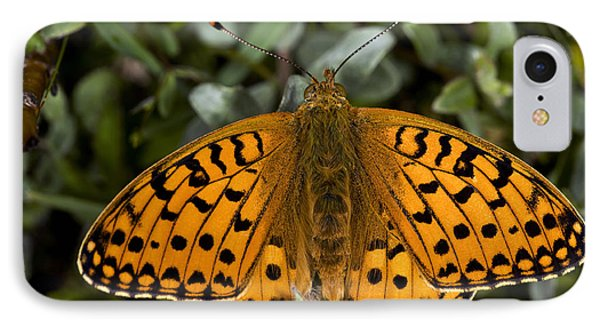 Dark Green Fritillary Butterfly Phone Case by Dr Keith Wheeler