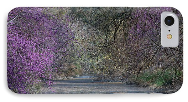 Davis Arboretum Creek IPhone Case