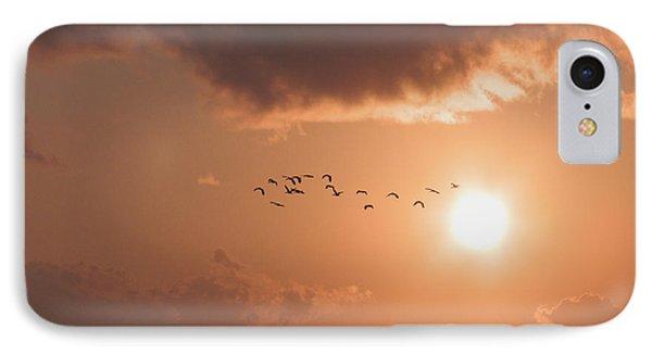 Dawn Flight IPhone Case