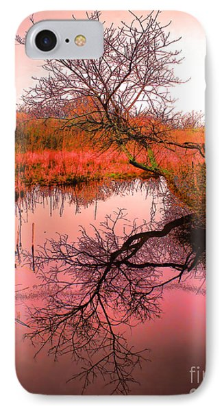 Dawn On The Marsh Phone Case by Nick Zelinsky