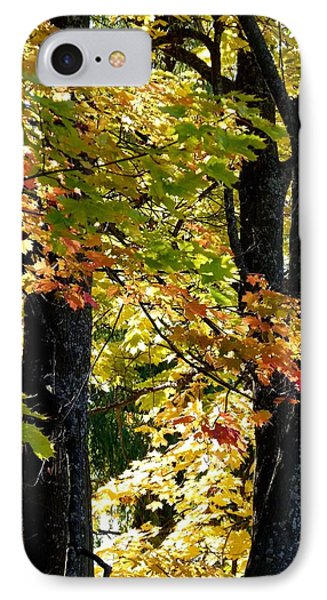 Dazzling Days Of Autumn Phone Case by Will Borden