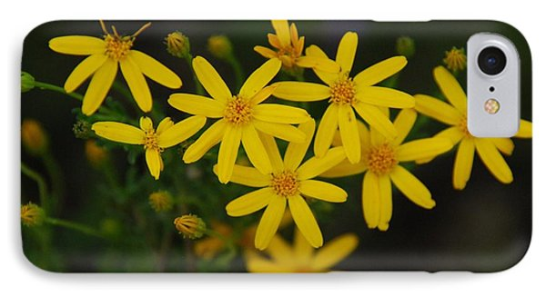 IPhone Case featuring the photograph Dbg 041012-0281 by Tam Ryan