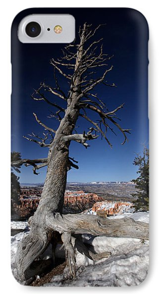 IPhone Case featuring the photograph Dead Tree Over Bryce Canyon by Karen Lee Ensley