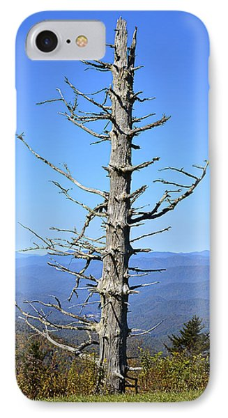 Dead Tree Phone Case by Susan Leggett