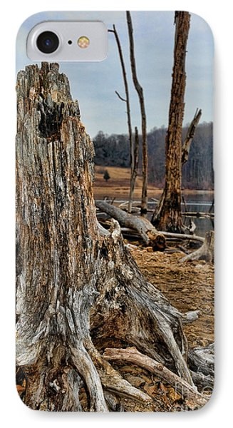 Dead Wood IPhone Case by Paul Ward