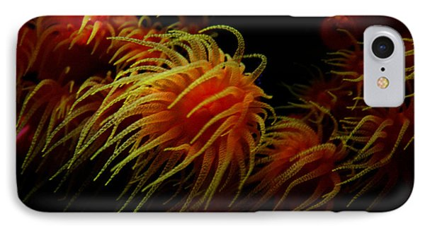 Deep Ocean Coral Polyp IPhone Case