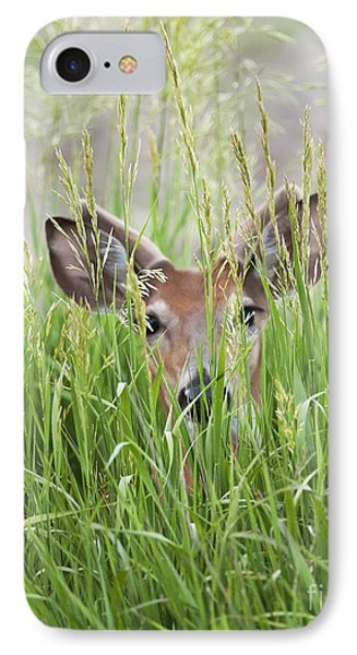 Deer In Hiding IPhone Case