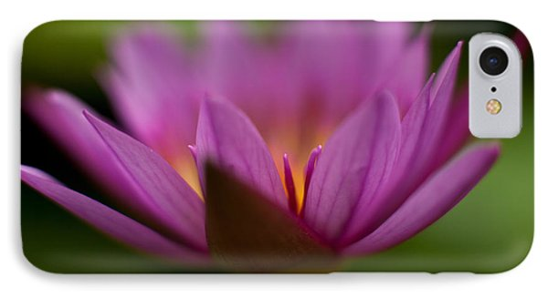 Delicate Glory IPhone Case by Mike Reid