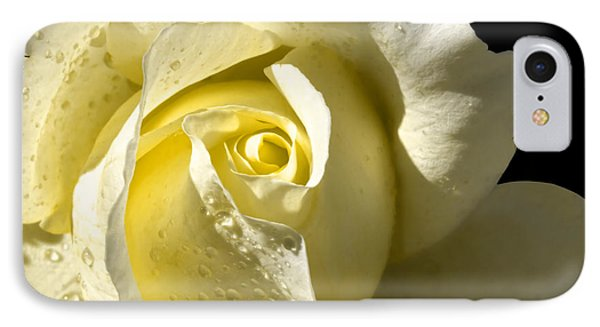 Delightful Yellow Rose With Dew IPhone Case by Tracie Kaska