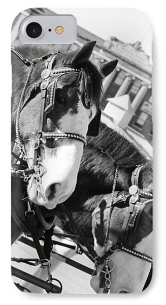 Denver Stock Show IPhone Case by Colleen Coccia