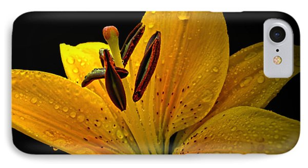 IPhone Case featuring the photograph Dew On The Daylily by Debbie Portwood