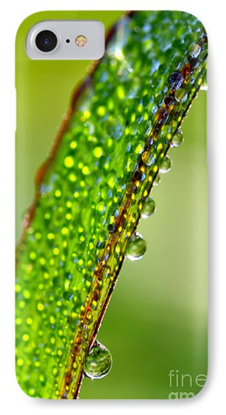 Dewdrops On Lemongrass Phone Case by Thomas R Fletcher