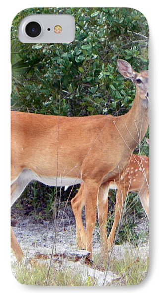 Doe With Fawn I IPhone Case