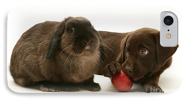 Dog Eating Apple With Rabbit IPhone Case