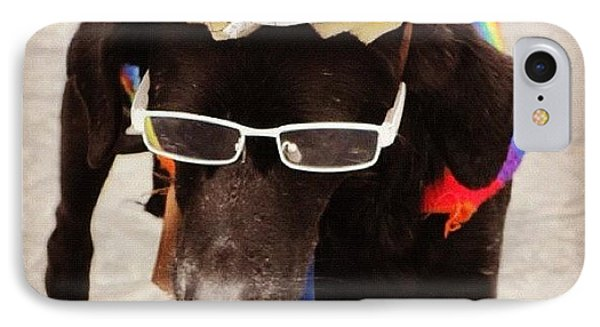 Dog From Lima IPhone Case