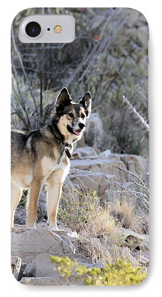 Dog In The Mountains IPhone Case by Marlo Horne
