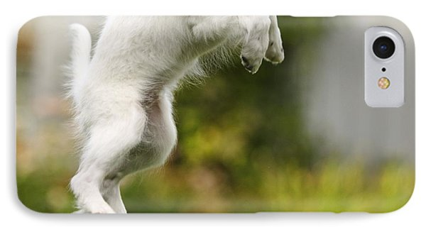 Dog Jumps Phone Case by Richard Wear