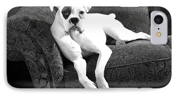 Dog On Couch Phone Case by Sumit Mehndiratta