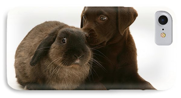 Dog Pup With Rabbit IPhone Case