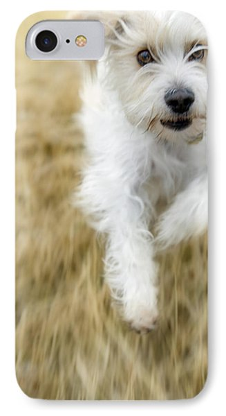 Dog Running IPhone Case by Darwin Wiggett