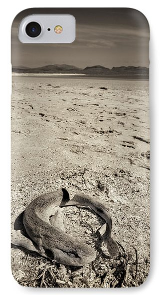 dogfish at Newborough Beach Phone Case by Meirion Matthias